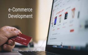 E-commerce Website Development with Free Domain and Hosting